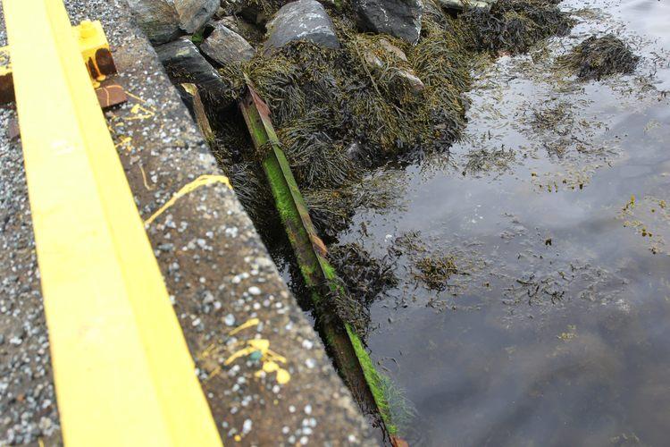 De gamle stålbjelkene er lempet i vannet nedenfor kaien. (Foto: Thomas Gangstøe)